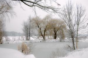 Winter-Teich_DSC4773
