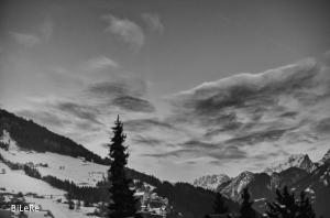 Landschaft_DSC5231