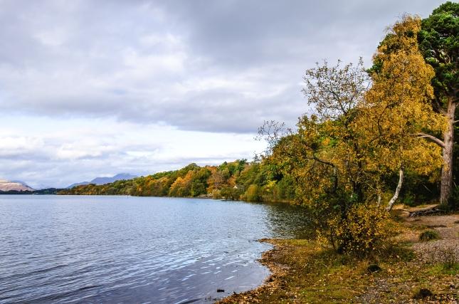 Loch Lomond-Schottland_DSC6313