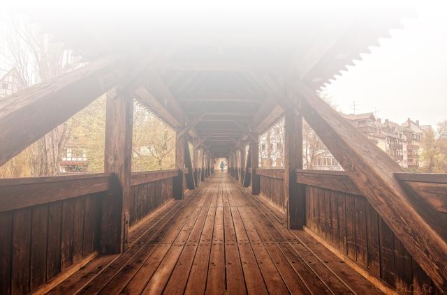 Brücke-aus-Holz_DSC7784-web