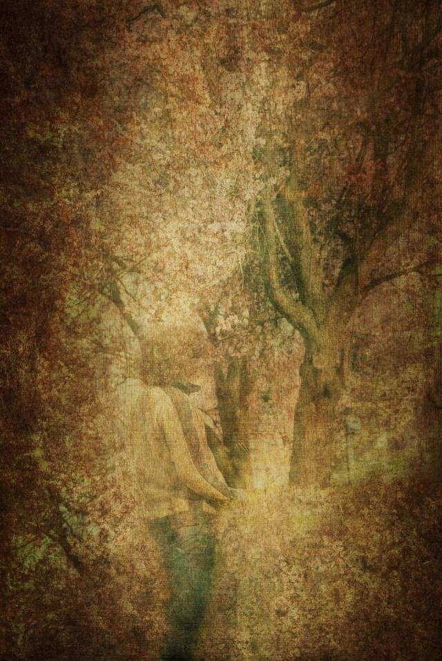 Mann vor dem Baum_DSC1938.jpg