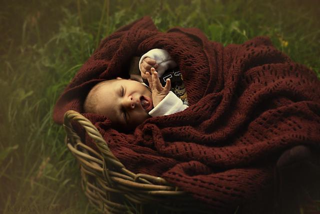 Baby_DSC2524